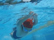 水泳・スミング