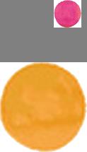 ico01